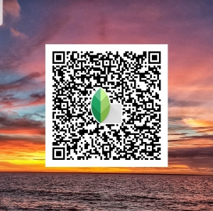 Darwin sunset with superimposed QR code