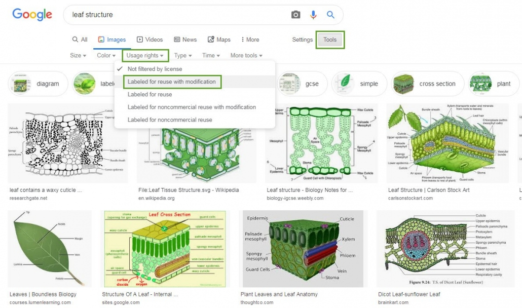 Screenshot showing Google images search