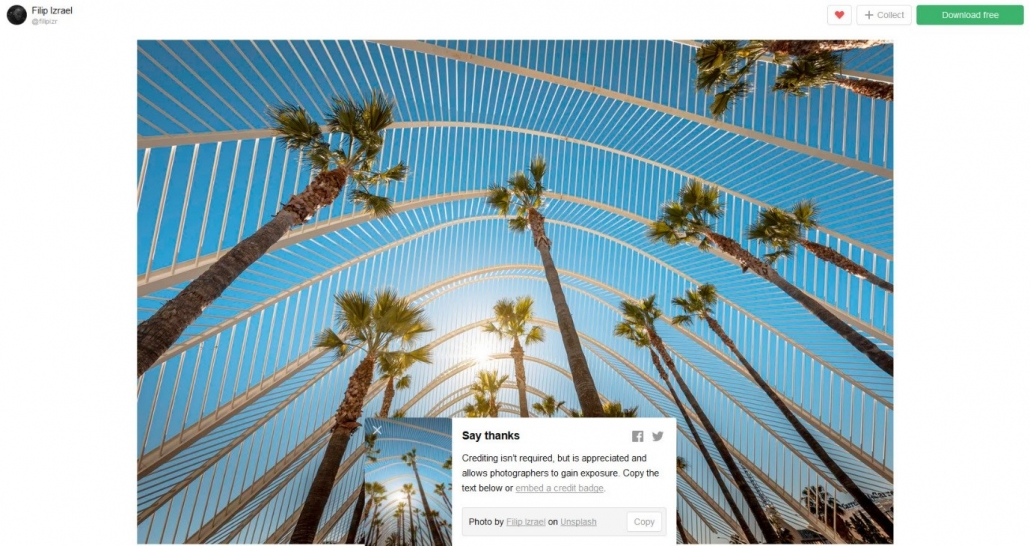 A cluster of tall palm trees silhouetted against a blue sky, with a text box to say thanks to the photographer